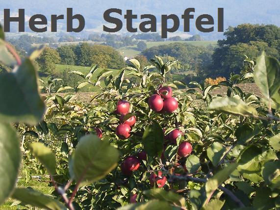 Herb Stapfel